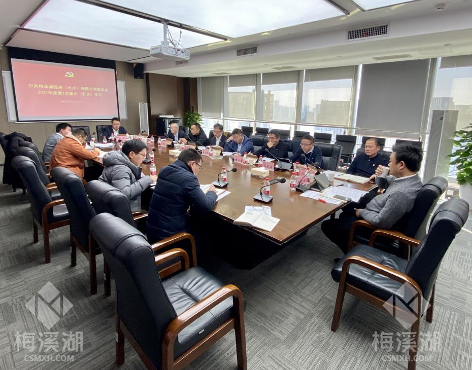 梅溪湖公司召开2021年度第1次集中(扩大)学习